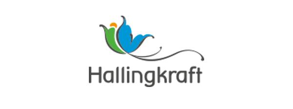 Hallingkraft AS (Ål Kraftverk KF)